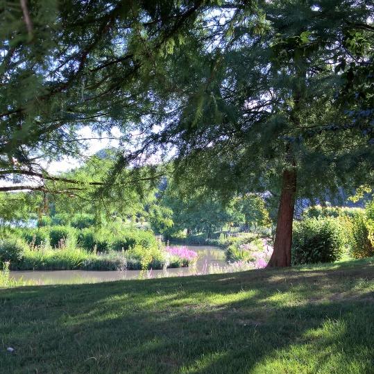 balade sophorologie nature en plein air en groupe à Montville et Fontaine Le Bourg par corinne dunocq sophrologue 76 SEINE MARITIME ROUEN NORD